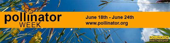 pollinatorweek2012